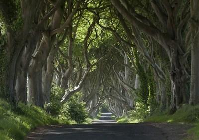 Nordirlands Verbindungen Zu Game Of Thrones
